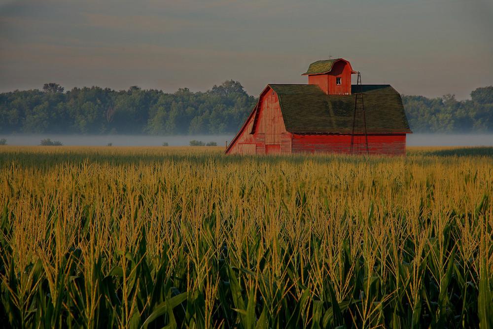 farm and crop insurance Woodstock VA